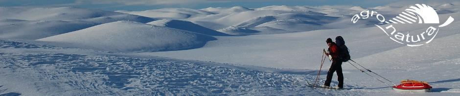 Agro-Natura-winterreizen-Hardangervidda.jpg