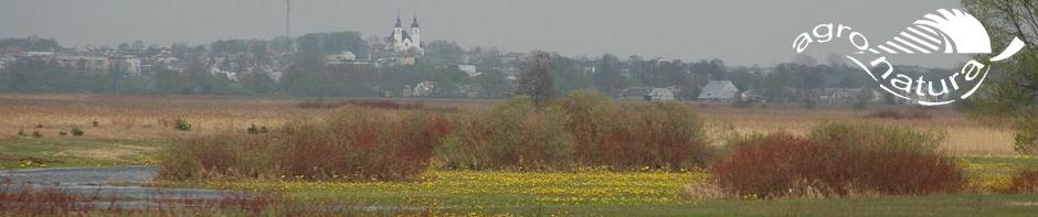 Agro-Natura-Biebrza-Goniadz.jpg