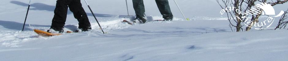 Agro-Natura-Sneeuwwandelen-2.jpg
