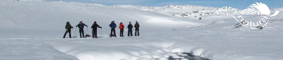 Agro-Natura-Sneeuwwandelen-3.jpg