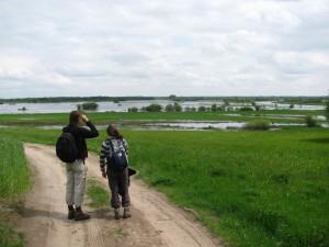 reisverslagen Wandelen langs de Biebrzamoerassen