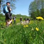 Wandelen in de stroomdalen van Narew en Biebrza