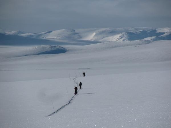 Een enkele keer, meestal tegen Pasen, worden sommige routes met takken gemarkeerd. Mits je weet waar de route naar leidt, wordt de navigatie er wel een stuk makkelijker van.